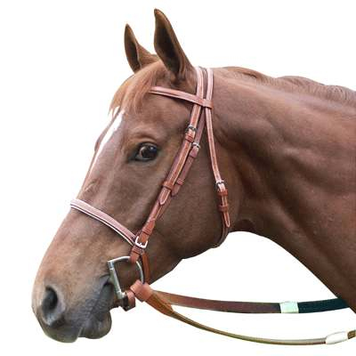 if youre looking for a leather racing bridle we have just