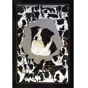 Border Collies Card 6 Pack