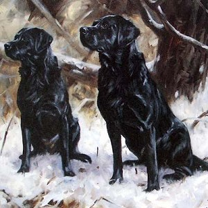Black Labs in Snow Card 6 Pack (Labrador Retrievers)