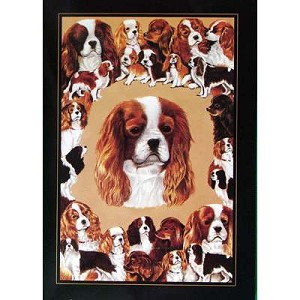 Cavalier King Charles Card 6 Pack