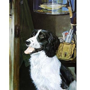 Fishermans Friends Card 6 Pack (English Springer)