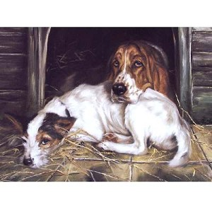 Fed Up Card 6 Pack (Jack Russell and Bassett Hound)