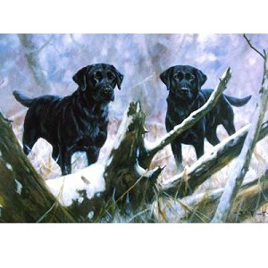 At Your Service Card 6 Pack (Labrador Retriever)