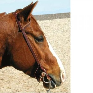 Shenandoah Western One Ear Headstall