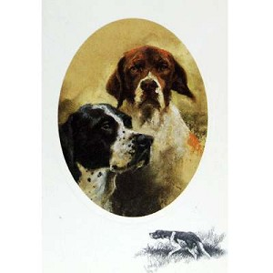 English Pointers Potrait Card 6 Pack
