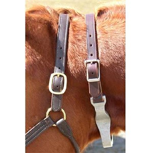 Cribbing Strap with Leather Crown