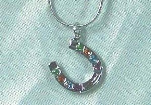 Exselle Platinum Plated Horseshoe Necklace with Colored Crystals