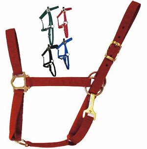Economy Poly Horse Halter with Snap