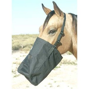 Best Friend Feed Bag with nylon strap