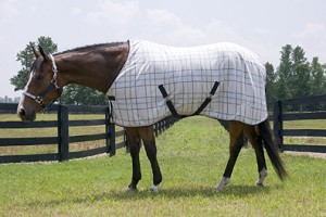 Granite Plaid Lami-Cell Fleece Cooler