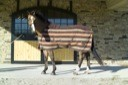 Double Striped Lami-Cell Fleece Cooler