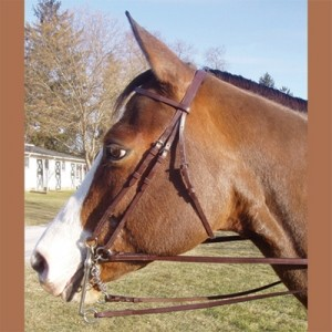 Weymouth Work Bridle by Legacy