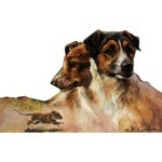 Terriers and a Mouse Card 6 Pack (Jack Russells)