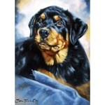 Rottweiler Puppy Card 6 Pack