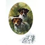 Terrier Portrait Card 6 Pack (Jack Russells)