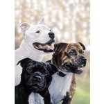The Gang Card 6 Pack (Straffordshire Terrier)