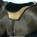 Comfort Plus Western Bareback Riding Pad