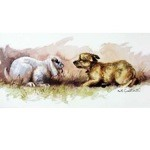 Well Card 6 Pack (Border Terrier and Lop Ear Rabbit)