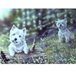Time to Play Card 6 Pack (West Highland Terrier)