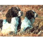 The Partnership Card 6 Pack (English Springer)