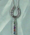 Exselle Platinum Plated Horseshoe Necklace with Dangle and Colored Crystals