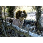 Winters Morning Card 6 Pack (English Springer)
