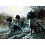 In the Morning Mist Card 6 Pack (English Springers)