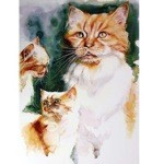 The Ginger Tom Card 6 Pack (Cat)