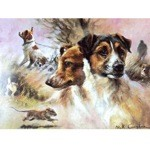 Profiles of Terriers Card 6 Pack (Jack Russells)