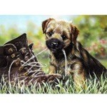 Tongue Tied Card 6 Pack (Border Terrier)