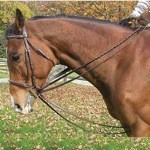 Premium Leather Draw Reins by Legacy