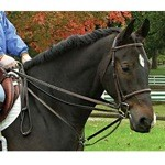 Draw Reins with Breastplate by Legacy