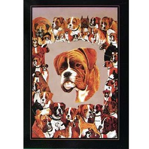 Boxer Dog Card 6 Pack