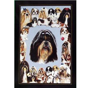 Shih Tzu Card 6 Pack