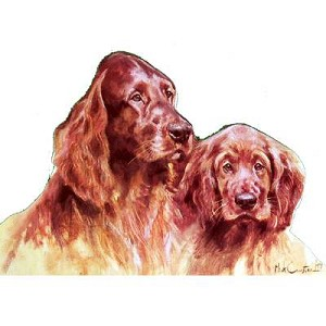 Mom and Pup Irish Setter Card 6 Pack