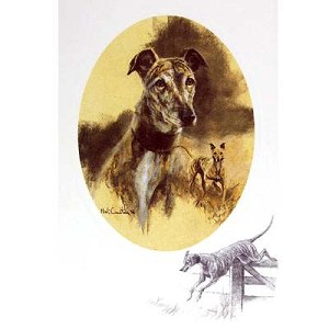 Lurcher Card 6 Pack