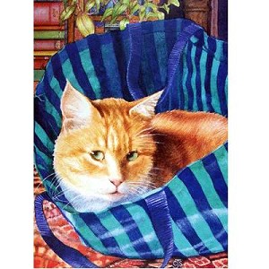 Bagged Card 6 Pack (Cat)