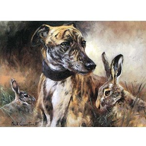 Greyhound and Hare Card 6 Pack
