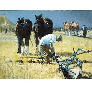 Fine Tuning Card 6 Pack (Draft Horse)