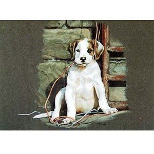 All Strung Up Card 6 Pack (Puppy)