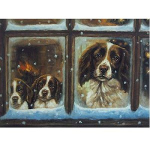 Christmas Eve Card 6 pack ( English Springer Puppies in Window)