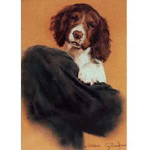Pick of the Litter Card 6 Pack (Person with English Springer Puppy)