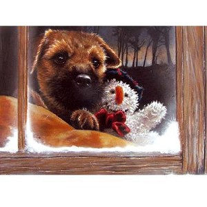 Frosty Card 6 Pack ( Border Terrier in Window with Teddy)