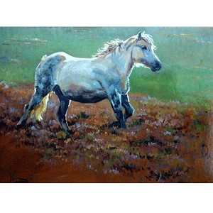 Romping Along Card 6 Pack (Pony)