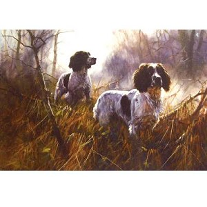 The Beaters Card 6 Pack ( Looking Out English Springers)