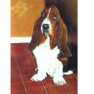 They are Late Card 6 Pack (Bassett Hound)