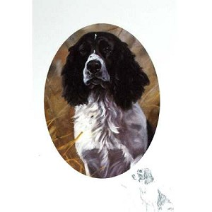A Grand Worker Card 6 Pack (English Springer)