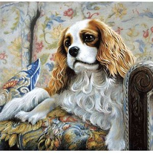 Sitting Pretty Print (Cavalier King Charles)