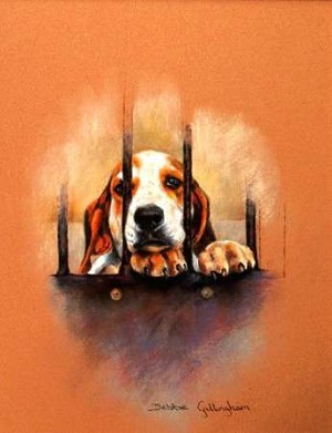 Doing Time Print ( Puppy Hound Behind Bars) by Debbie Gillingham