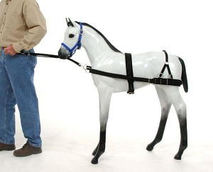 Royal King Foal Training Device